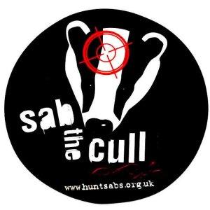 Sab Badger Cull